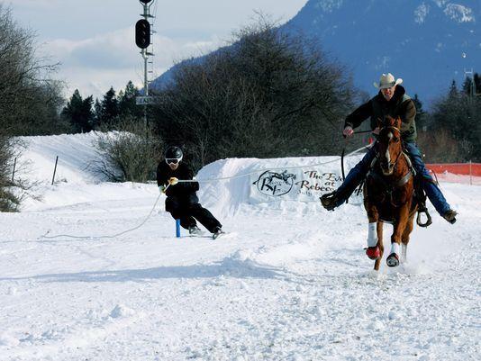 Έχετε ποτέ ακούσει για το skijoring;