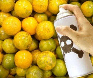 Food-Toxins-e1513636714164